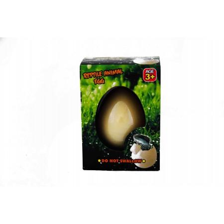 Gady w jajku
