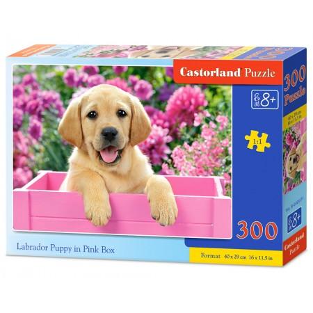 Puzzle 300 el. Labrador Puppy in Pink Box - Labrador w różowym pudełku