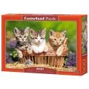 Puzzle 500 el. Three lovely kittens - Trzy słodkie kotki