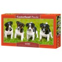Puzzle 600 el. Jack Russell Terrier Puppies