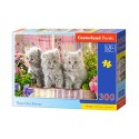 Puzzle 300 el. Three Grey Kittens - Trzy małe szare kotki
