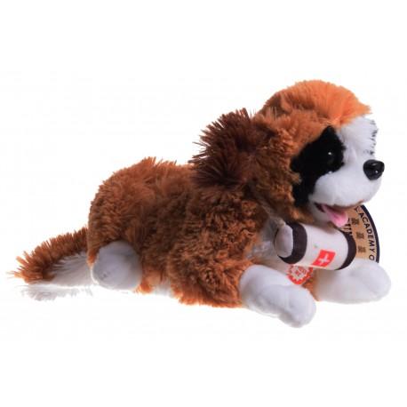 Pies Bernardyn z głosem