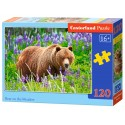 Puzzle 120 el. Bear on the meadow - Niedźwiedź na łące