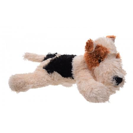 Pies Foxterier mały